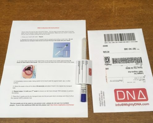 dna diet testing kit weight loss and type diabetes